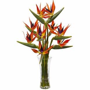 Birds of Paradise Floral Arrangements in Decorative Vase