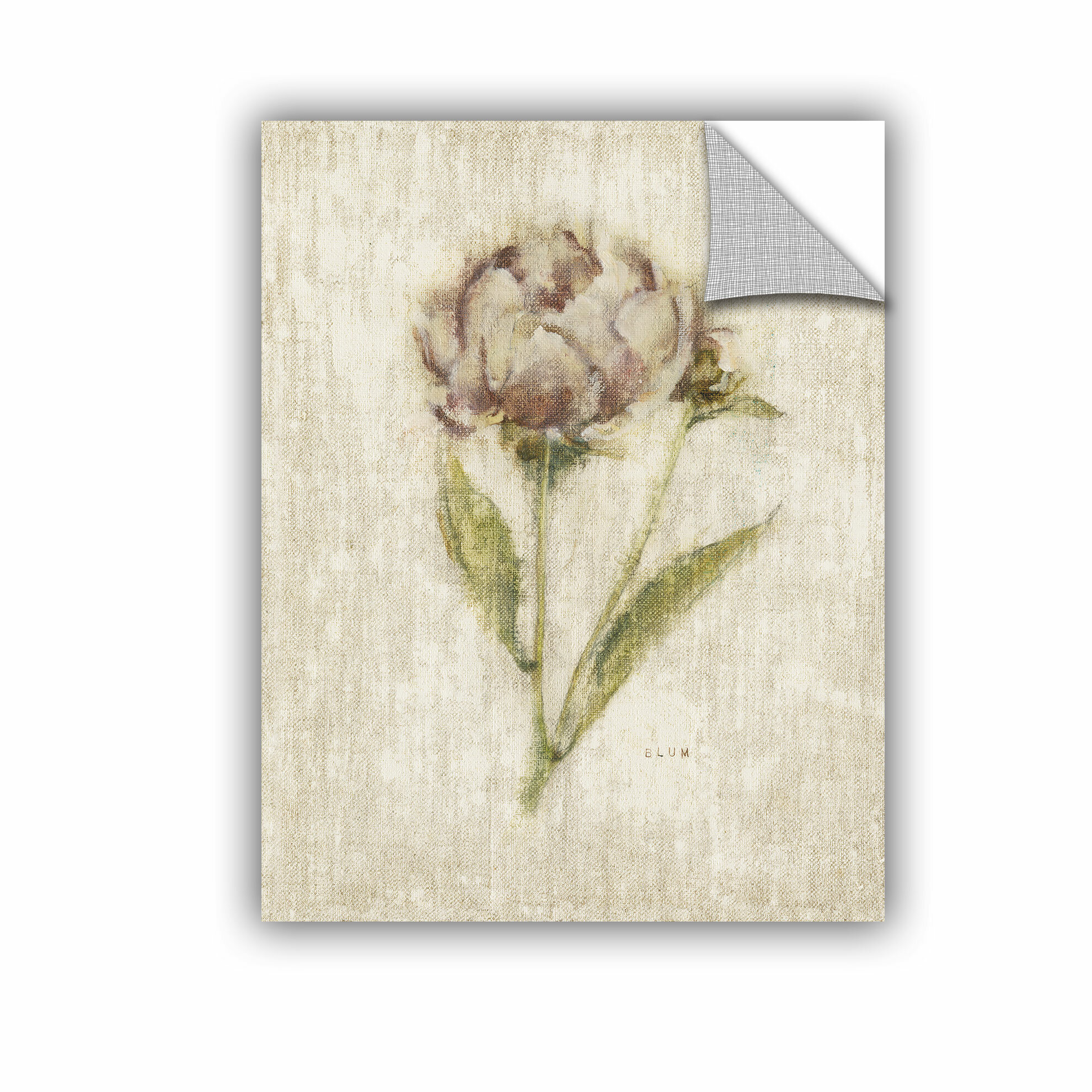 ArtWall Linda Parkers Desert Grasses II Appeelz Removable Graphic Wall Art 18 by 24