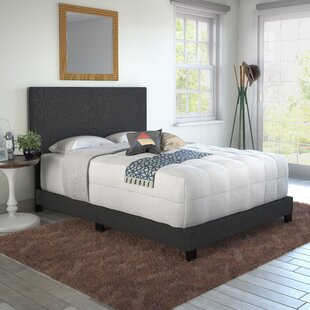 Aviana Upholstered Panel Bed by Turn on the Brights