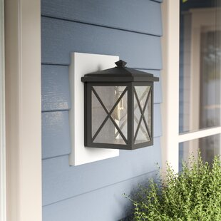 Alcott Hill Erikson 1 Light Outdoor Wall Lantern