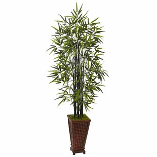 Artificial Floor Bamboo Tree In Rectangular Planter