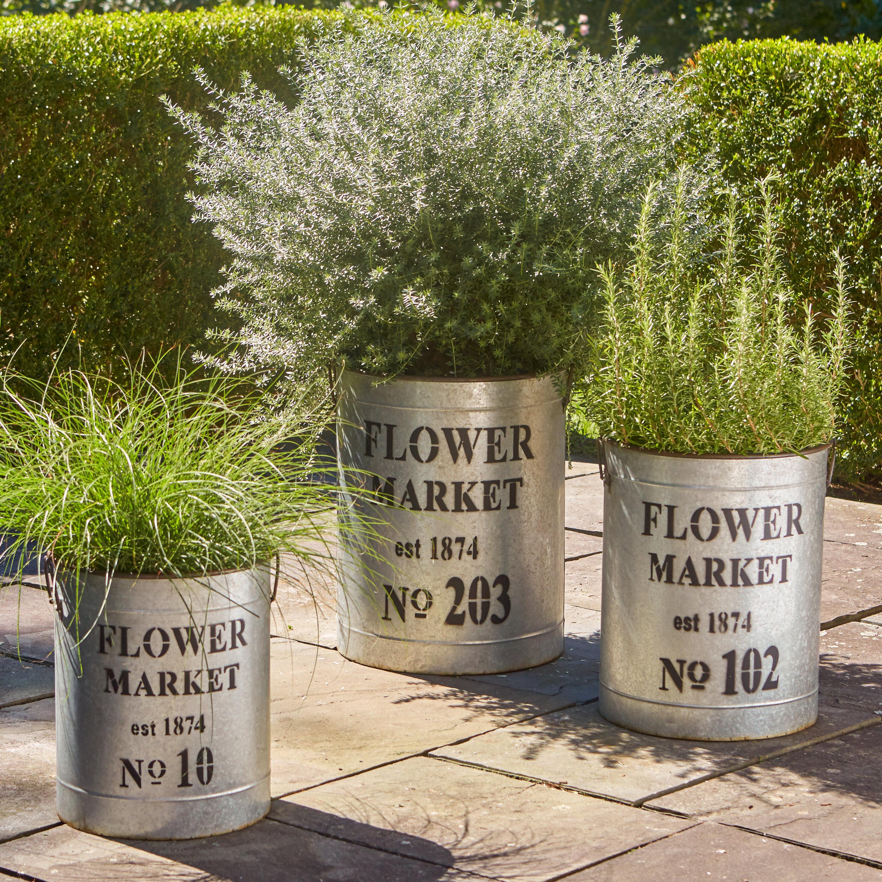 Birch Lane Dollie Flower Market 3 Piece Metal Pot Planter Set Reviews Wayfair
