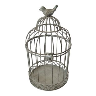 Caitlynn Metal Birdcage by Brambly Cottage