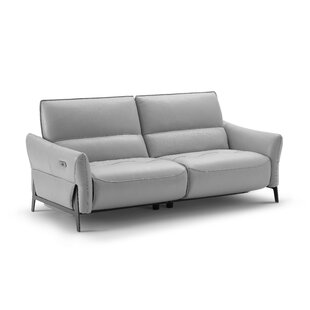 Orren Ellis Branchdale Leather Reclining Loveseat