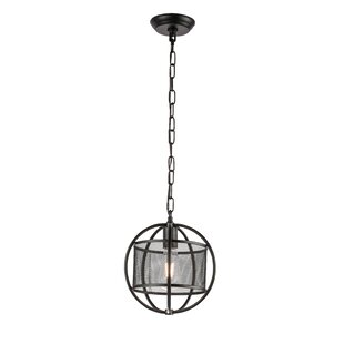 Child 1-Light Globe Pendan..