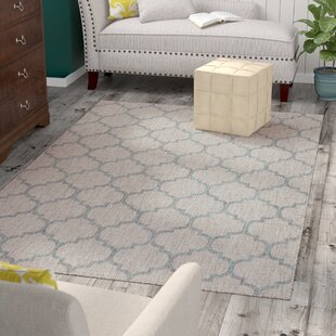 Drinkard Gray Indoor/Outdoor Area Rug