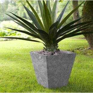 Rodas Plastic Plant Pot By Sol 72 Outdoor