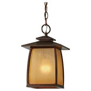 Loon Peak Alhambra 1 LED Lantern Pendant