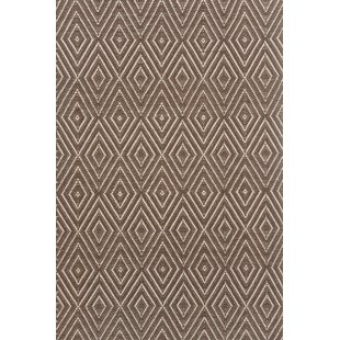 Hand-Woven Brown Indoor/Outdoor Area Rug