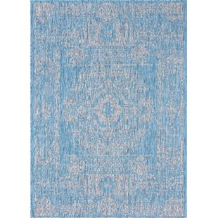 Crabb Blue/Gray Indoor/Outdoor Area Rug