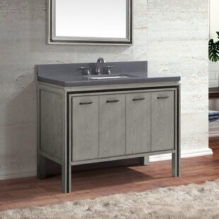 Worceer 43 Single Bathroom Vanity by Orren Ellis