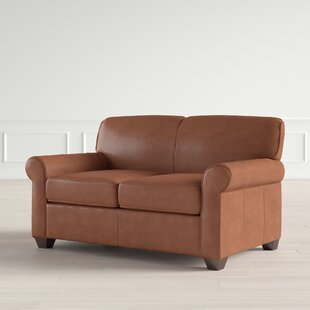 Outstanding Jennifer Leather Loveseat Squirreltailoven Fun Painted Chair Ideas Images Squirreltailovenorg