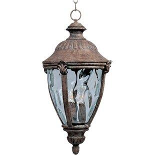 Fleur De Lis Living Velma 3-Light Outdoor Hanging Lantern