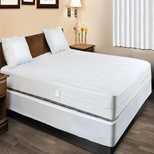 Encasement Bed Bugs Hypoallergenic Waterproof Mattress Protector