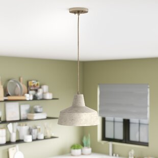 Check Prices Chamberlan 1-Light Dome Pendant By Wade Logan