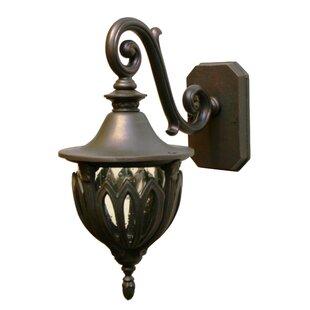 Alcott Hill Phillipstown 1-Light Outdoor Wall Lantern