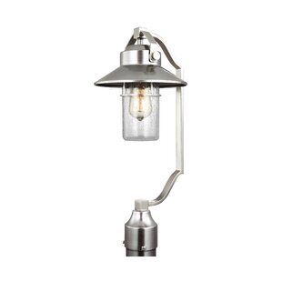 Affordable Tolliver 1-Light Lantern Head By Beachcrest Home