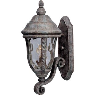Affordable Ithaca 1-Light Outdoor Sconce By Astoria Grand