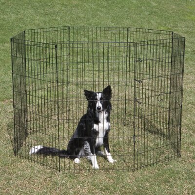 Exercise Dog Pen Crate Appeal