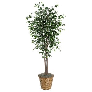 deluxe artificial potted natural ficus tree in basket - Silk Trees