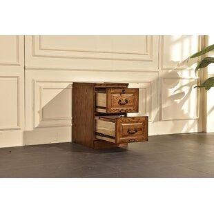 Sarthak 2 Drawer Vertical Filing Cabinet