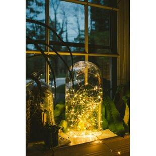 Hometown Evolution, Inc. 100-Light 33 ft. Fairy String Lights