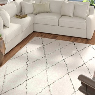 Dunford Handwoven Wool Ivory Area Rug by Mercury Row