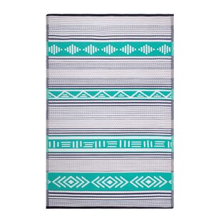 Swanson Green Indoor/Outdoor Area Rug