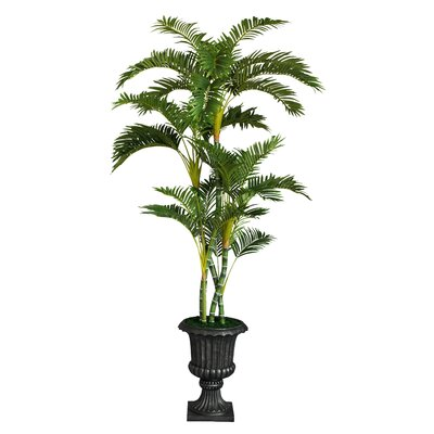 entracing palm tree type house plant. Tall Floor Palm Tree in Urn Nearly Natural Areca  Reviews Wayfair