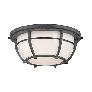 Longshore Tides Argie 2-Light Flush Mount