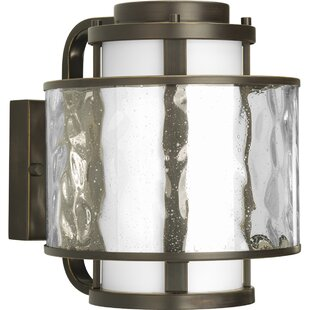 Price comparison Triplehorn 1-Light Outdoor Wall Sconce By Alcott Hill