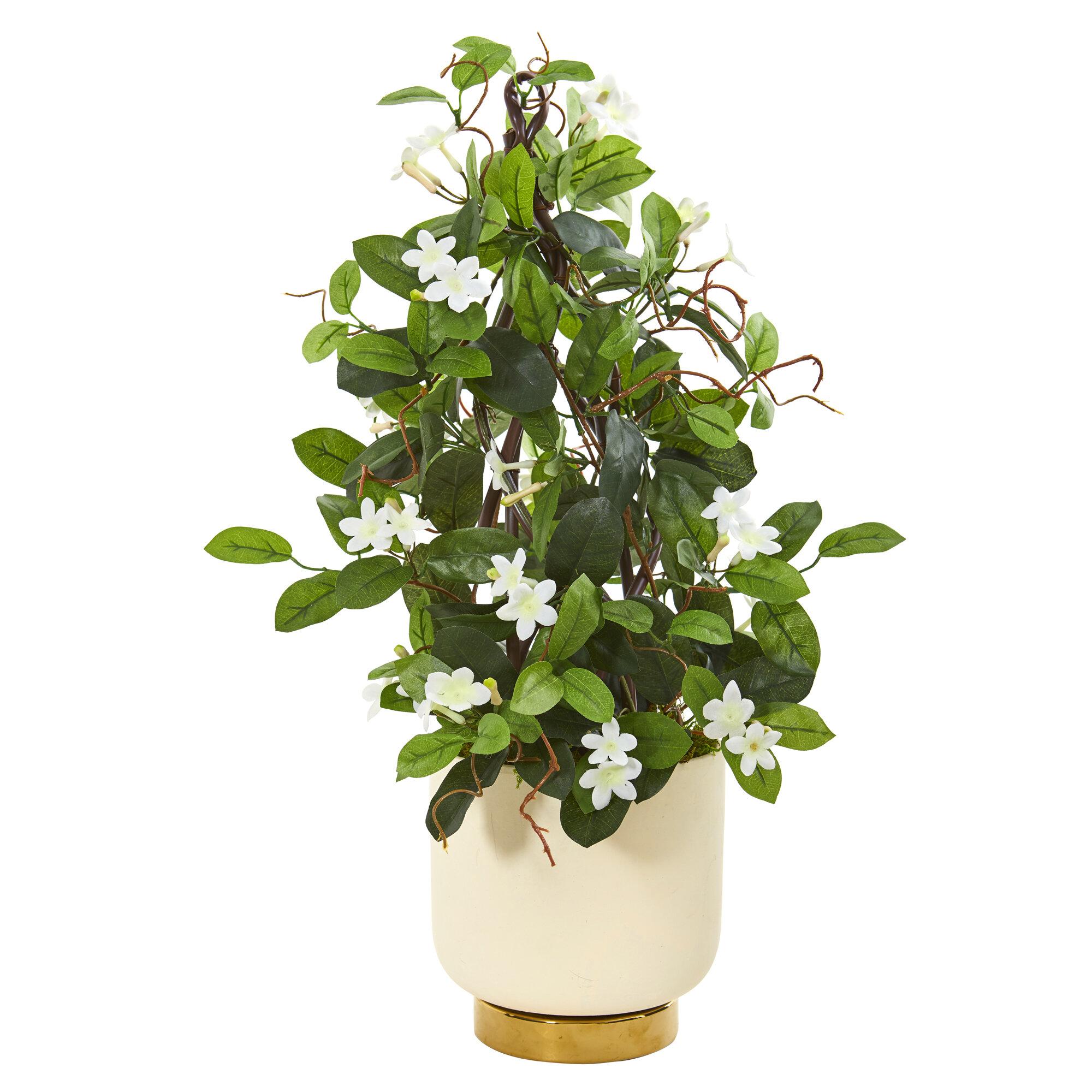 Mercer41 Artificial Stephanotis Plant In Planter Wayfair