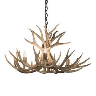 Loon Peak Scruggs Whitetail Deer 4-Light Novelty Chandelier