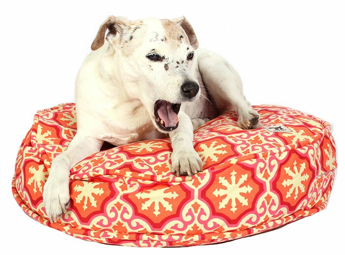 Terrific Valentina Papillon Dog Bed Cover Inzonedesignstudio Interior Chair Design Inzonedesignstudiocom