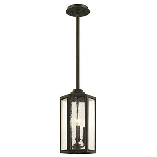 Gracie Oaks Hatherop 3-Light Outdoor Hanging Lantern