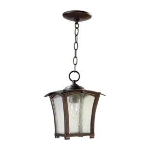August Grove Norman 1-Light Outdoor Hanging Lantern