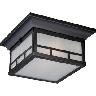 Inexpensive Oralia 2-Light Flush Mount By Bloomsbury Market