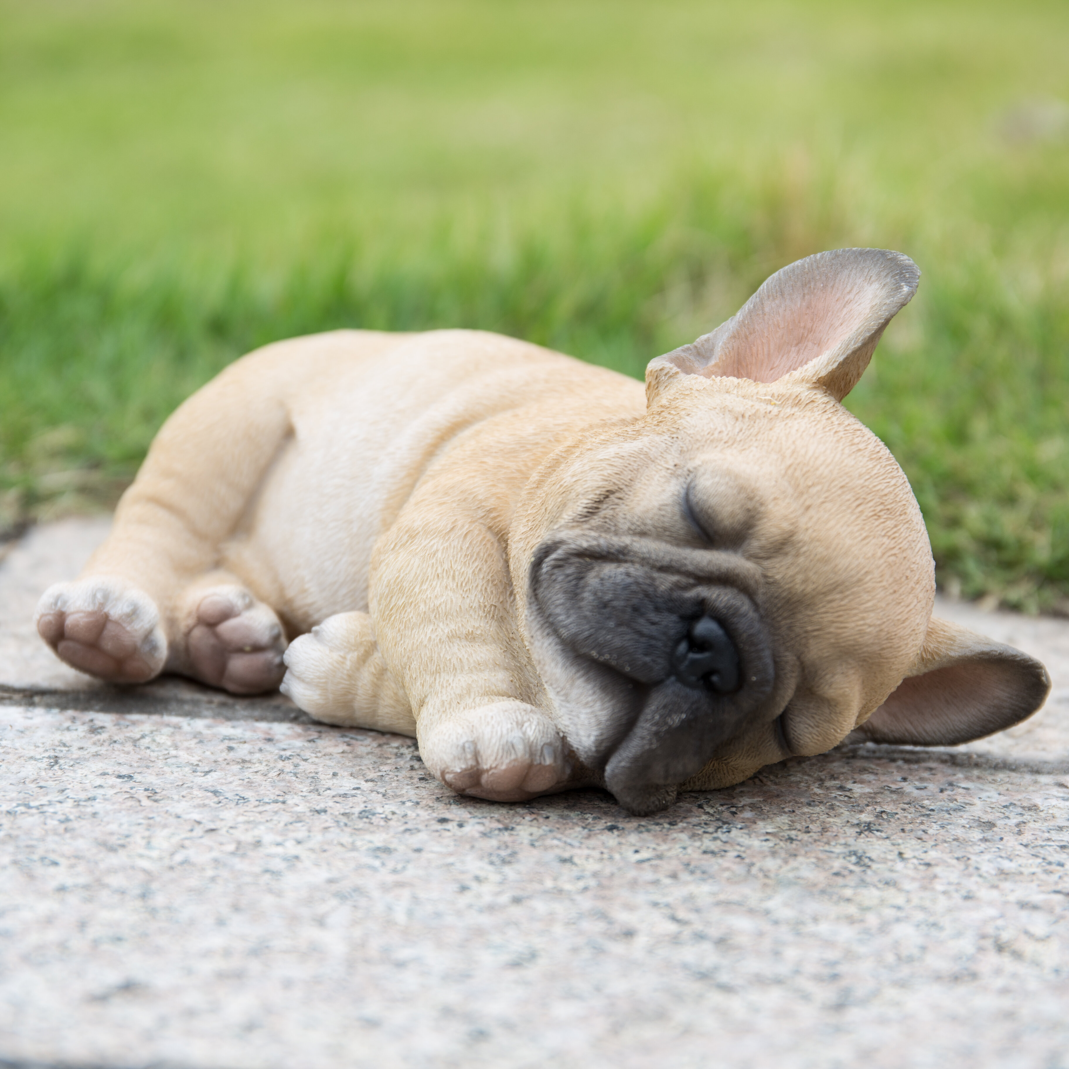 Sleeping French Bulldog Statue Figurine Life Like Realistic Garden Decor New