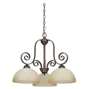 Beedeville 3-Light Shaded Chandelier by Fleur De Lis Living
