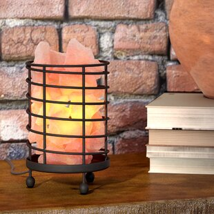 Shopping for Contern Cylinder Wired Basket 6 Himalayan Salt Lamp By World Menagerie