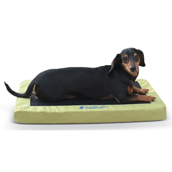 K&H Manufacturing Comfy N\' Dry Indoor / Outdoor Dog Bed & Reviews ...