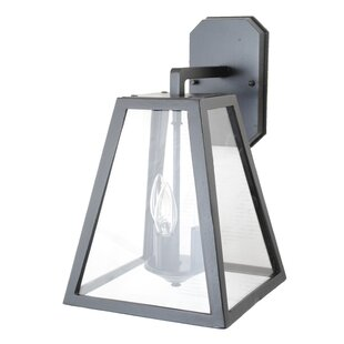 Reviews Fleeman 1-Light Outdoor Wall Lantern By Darby Home Co