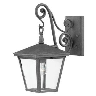 Hinkley Lighting Trellis 1-Light Outdoor Wall Lantern