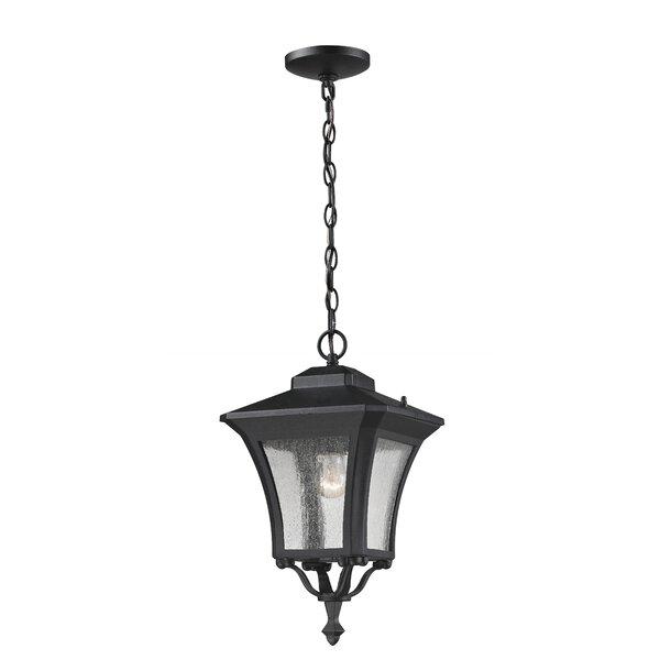 Charlton Home Digennaro 1 Light Outdoor Hanging Lantern Wayfair