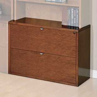 Lemasters 2 Drawer File