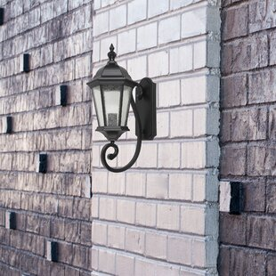 Living District 1-Light LED Outdoor Wall Lantern