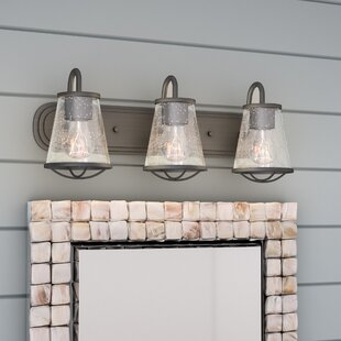 Beachcrest Home Regan 3-Light Vanity Light