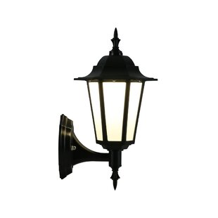 Pinto LED 1 Outdoor Wall Lantern by Astoria Grand