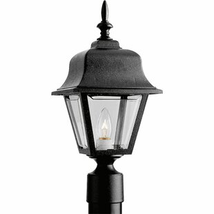 Great Price Triplehorn 1-Light Antique Lantern Head By Alcott Hill