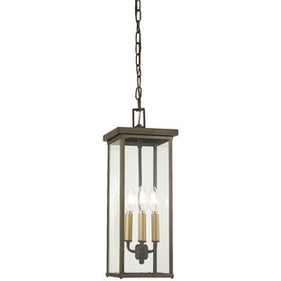 Maultsby 4-Light Outdoor Hanging Lantern by Gracie Oaks
